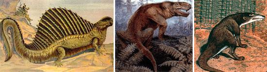 Слева направо: пеликозавры (диметродон), терапсиды (иностранцевия, териодонт)