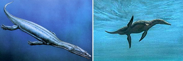 Плезиозавры. Слева нотозавр, справа – плиозавр