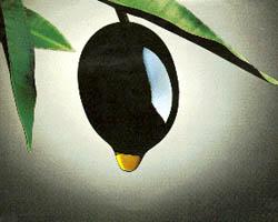 Одним из компонентов оливкового масла является ненасыщенная жирная олеиновая кислота